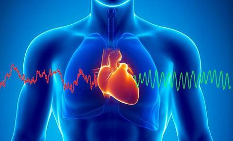 Initiation à la cohérence cardiaque