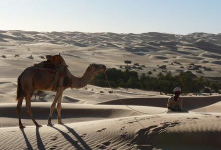 La vidéo d'une randonnée en Mauritanie