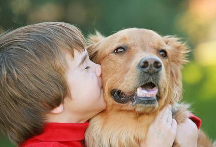 La thérapie assistée par l'animal