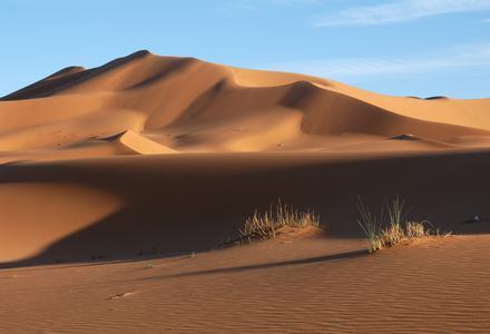 Carole dans le désert