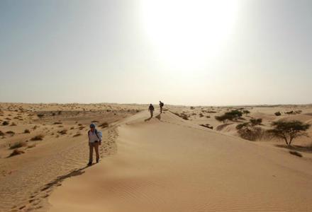 Le témoignage de Nicole après son stage dans le désert en Mauritanie !