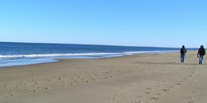 Walking thérapie à la plage