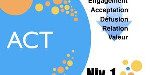 Formation en Thérapie d'Acceptation et d'Engagement niv 1 Bruxelles