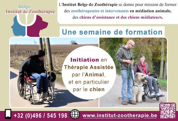 Initiation à la Thérapie Assistée par l'Animal, et en particulier par le chien