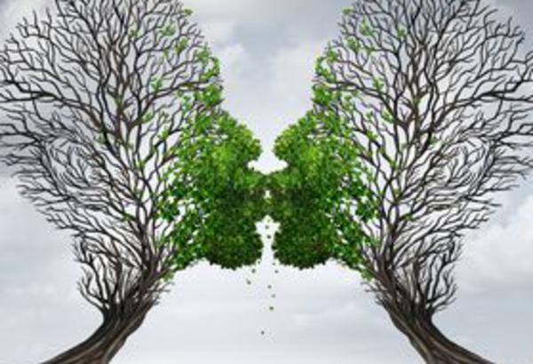 Initiation à l'Ennéagramme: à la rencontre de votre potentiel inexploité