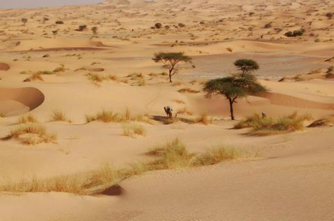 Le témoignage d'Olivier après son stage dans le désert en novembre 2012